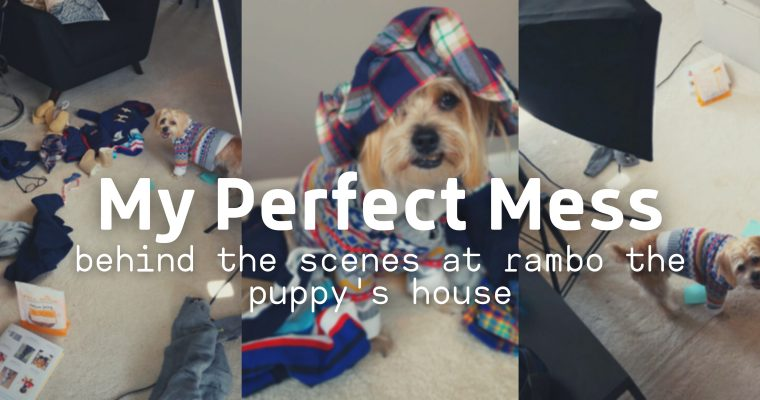 My Perfect Mess: Behind the Scenes at Rambo the Puppy's House