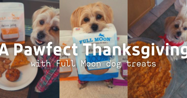A Paw-Fect Thanksgiving Feast with Full Moon Treats